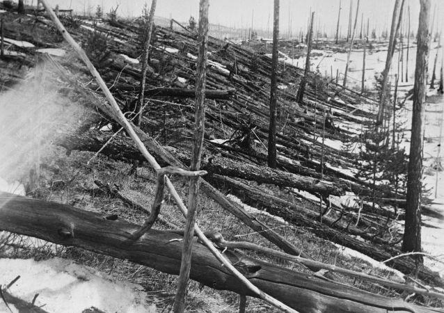 Forêt brûlée dans la région où a explosé la météorite de la Toungouska