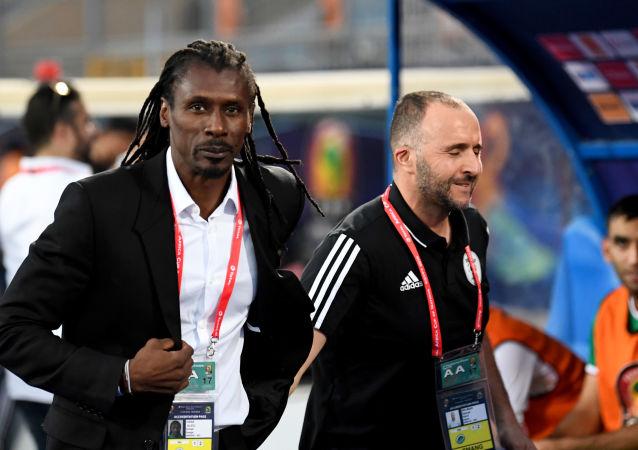Djamel Belmadi et Aliou Cissé en CAN 2019