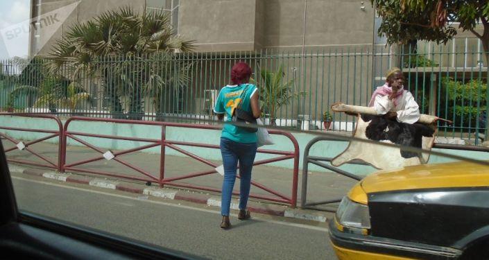 Une Dakaroise vêtue du maillot du Sénégal, le vendredi 19 juillet 2019, avant le coup d'envoi du match Sénégal-Algérie, finale de la CAN.
