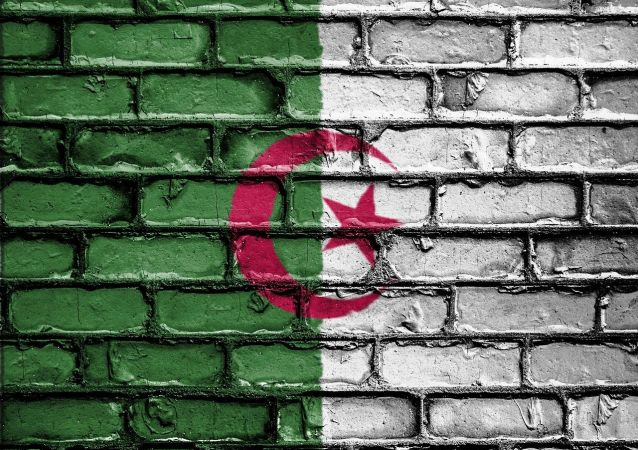 Couleurs du drapeau algérien (image d'illustration)