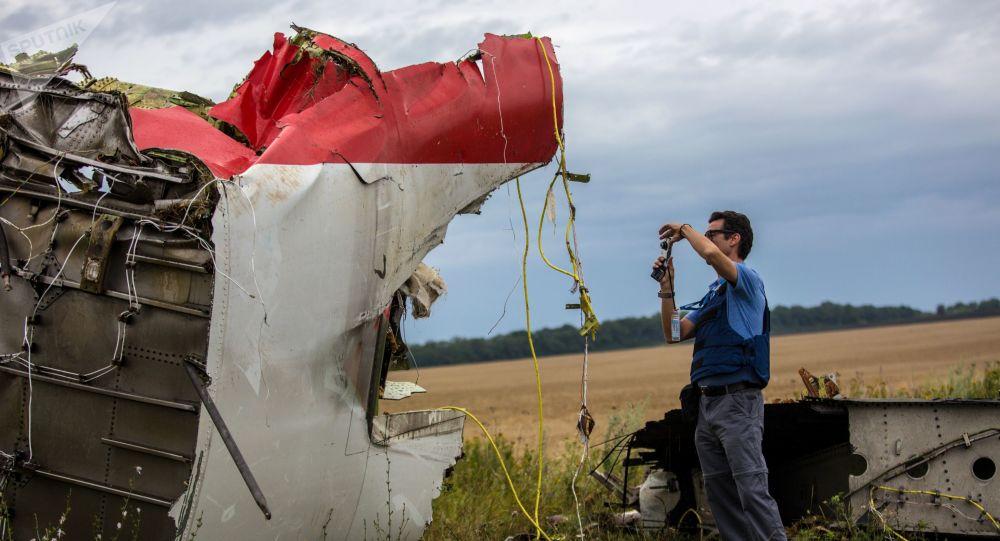 Faute de demande, un détective allemand renonce à publier des preuves sur le crash du MH17