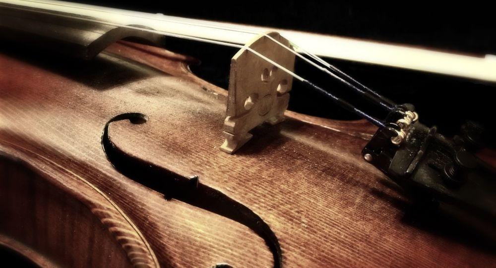 Un violon de 310 ans oublié dans un train a été retrouvé