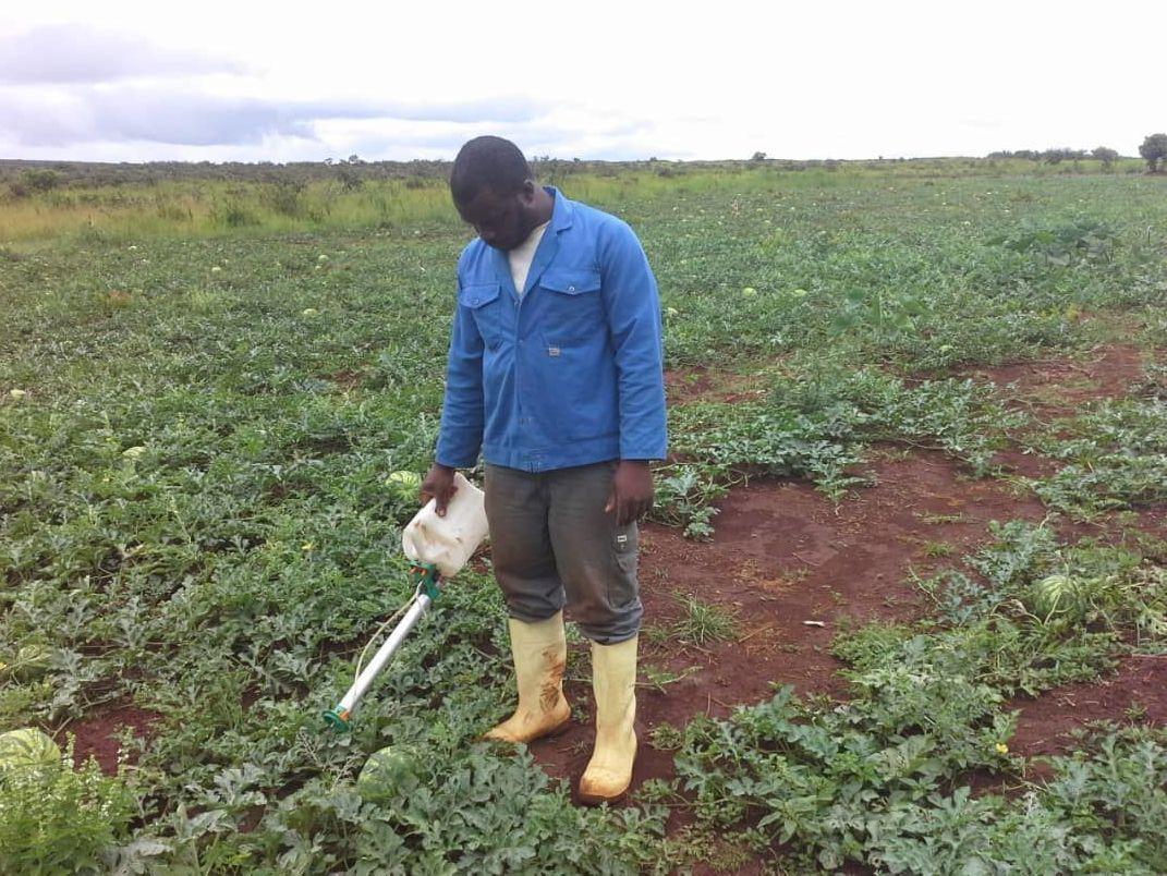 Rhamane Bidima, agriculteur