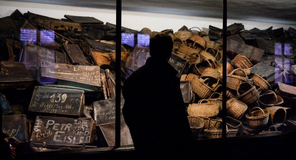 Auschwitz: rien ne justifie les mensonges (expert français)