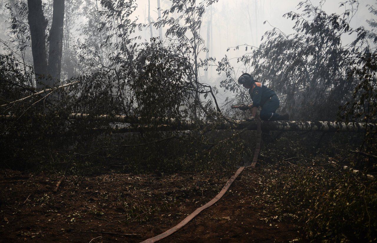 Сотрудник МЧС России на месте лесных пожаров в Тверской области