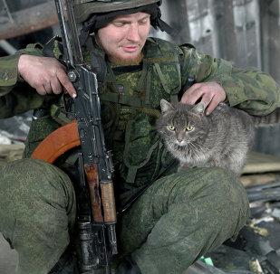 Un insurgé avec un chat à l'intérieur du bâtiment détruit de l'aéroport de Donetsk, en Ukraine (25 février 2015)