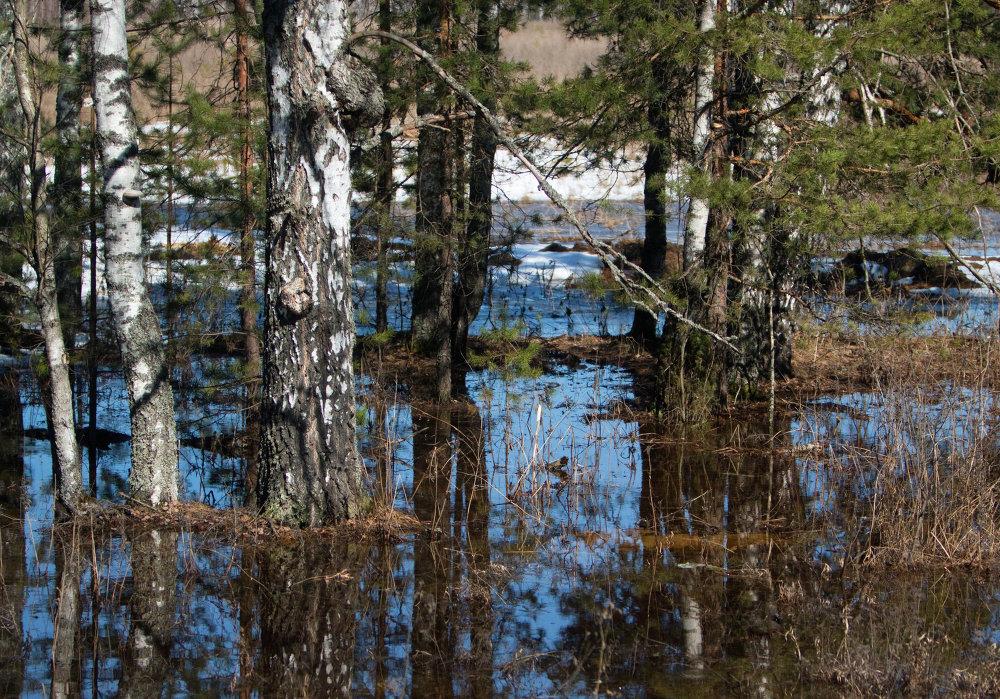 Fonte des glaces près de Mourom (oblast de Vladimir)