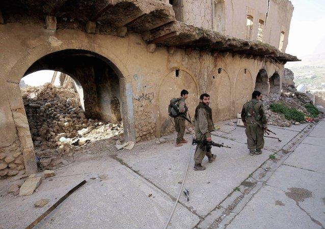 Militants du Parti des travailleurs du Kurdistan (PKK)