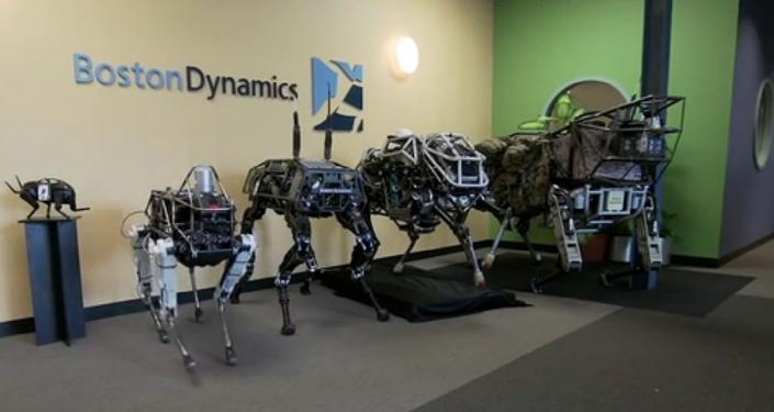 Un chien-robot baptisé Spot