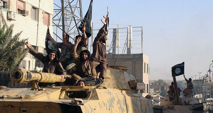 Combattants de l'Etat islamique en Syrie