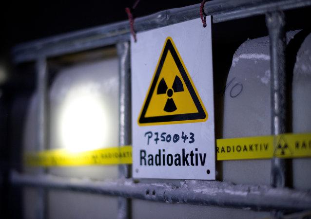 Des virus découverts dans les ordinateurs d'une centrale nucléaire allemande