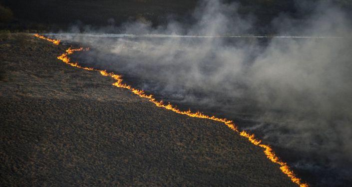 Incendie naturel en Ukraine