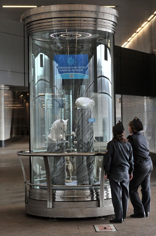 Une exposition du musée Darwin dans le métro de Moscou
