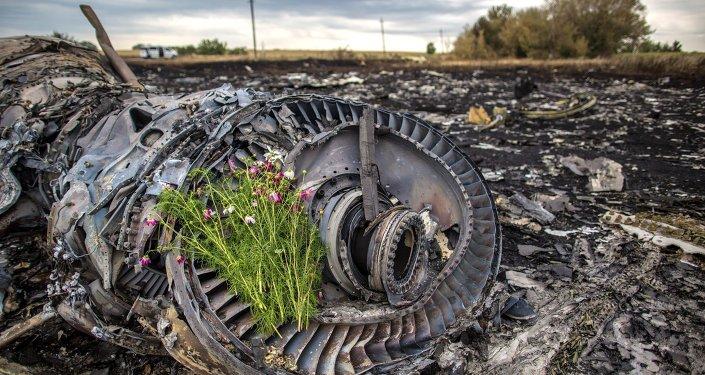 Sur les lieux du crash du Boeing 777 malaisien en Ukraine