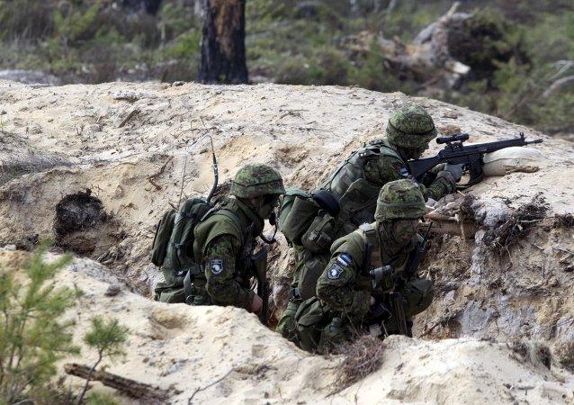 Des soldats estoniens prennent part aux exercices militaires Siil 2015 (Hérisson 2015), mai 2015