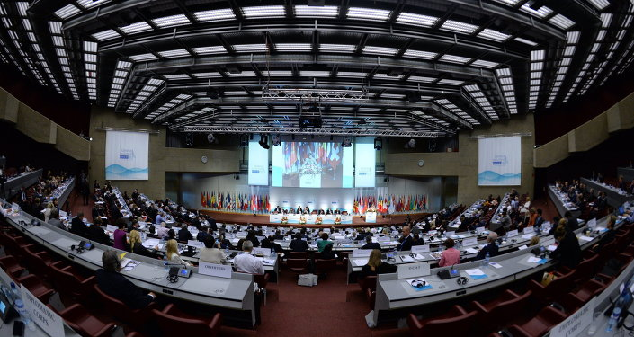 L'Assemblée parlementaire de l'OSCE. Archive photo