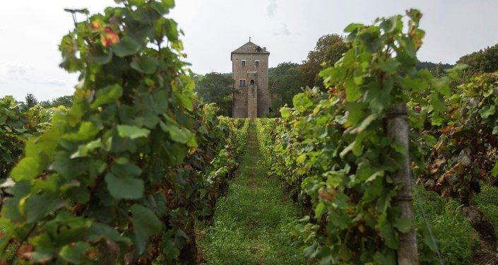 Château de Gevrey-Chambertin. Bourgogne