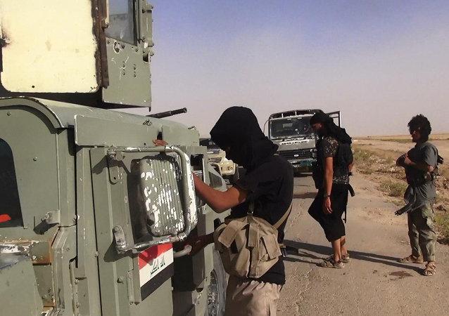 Combattants de l'Etat islamique