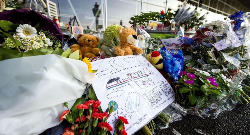 Crash du Boeing MH17