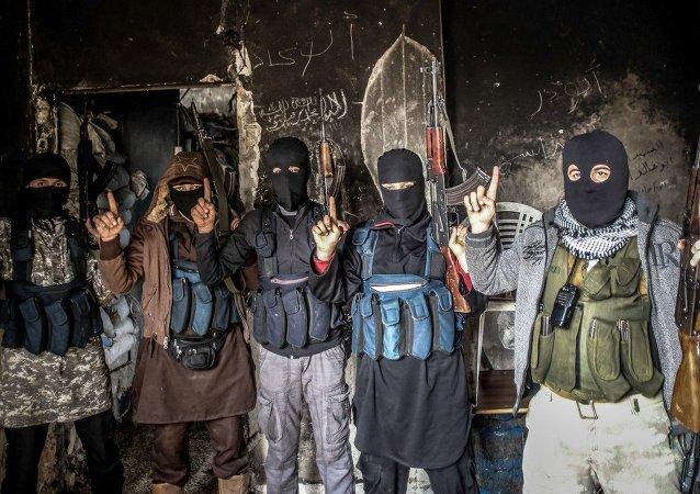 Membres d'Al-Qaïda