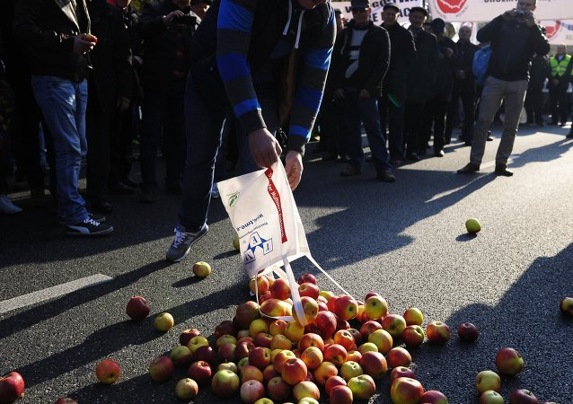 Action de protestation d'agriculteurs polonais à Varsovie (archives)