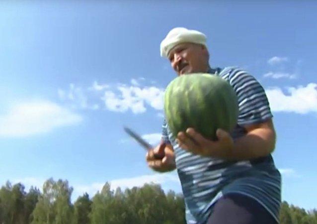 Biélorussie: le président récolte des pastèques