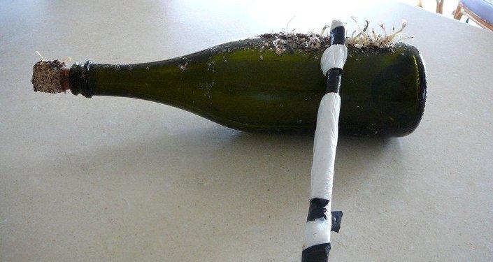 La plus vieille bouteille jetée à la mer s'échoue en Allemagne