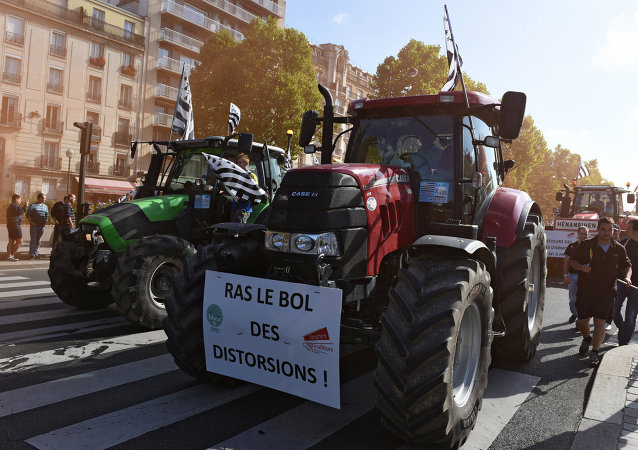 Des milliers d'agriculteurs en colère ont manifesté à Paris
