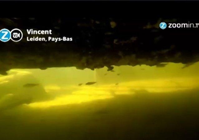 Douce plongée sous la surface des canaux hollandais