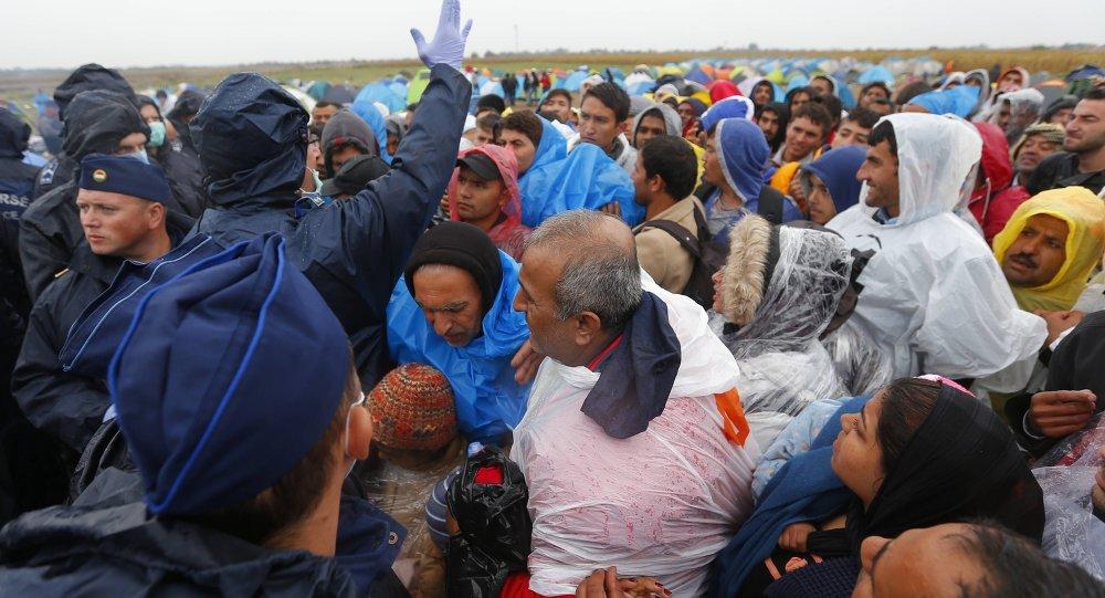 Le camp de migrants de Röszke, 10 septembre 2015