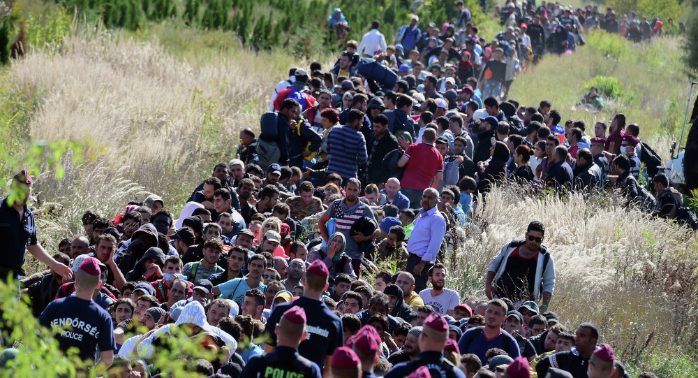 Directed by Hungarian police officers, migrants make their way through the countryside after they crossed the Hungarian-Croatian border near the village of Zakany in Hungary to continue their trip to north on September 21, 2015