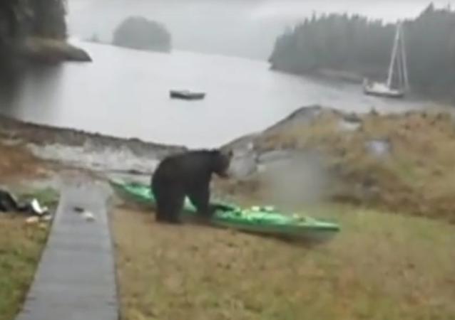 La jeune fille a menacé l'ours avec sa bombe au poivre en le suppliant de ne pas s'attaquer à l'embarcation