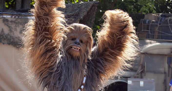 Chewbacca (archives)