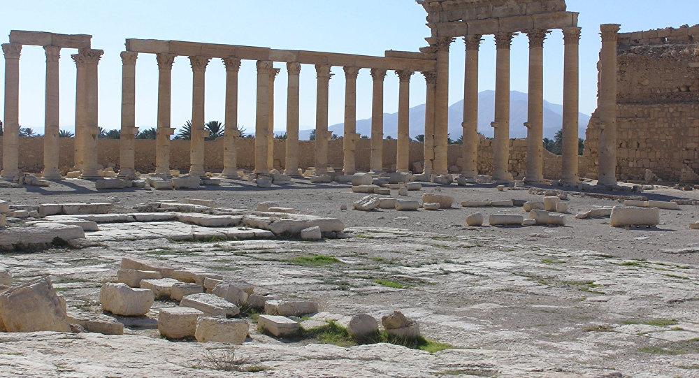 Cité antique de Palmyre
