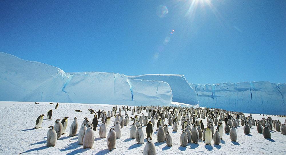 COP 21 ou bonnet blanc, blanc bonnet pour le réchauffement climatique?