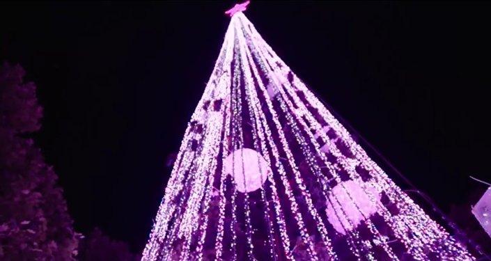 L'Australie bat le record du sapin de Noël le plus illuminé