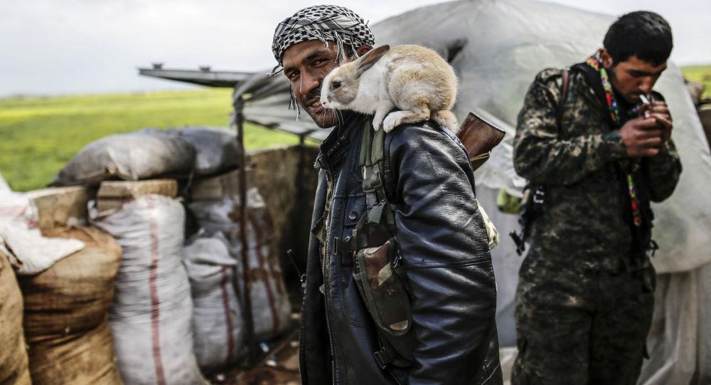 Combattant kurde à Kobané