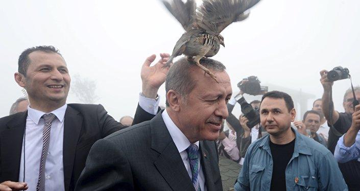 Erdogan n'est pas du genre à se faire caricaturer