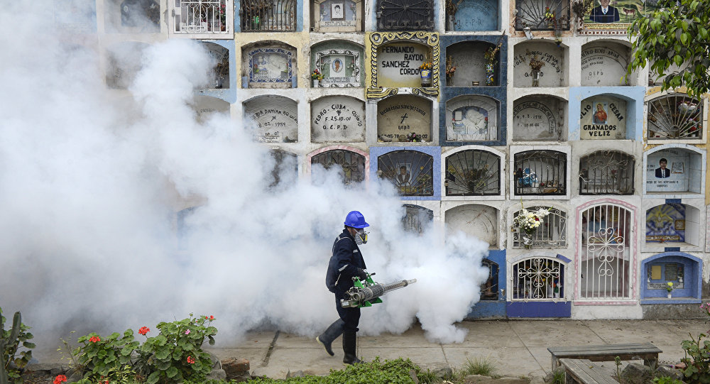 Un spécialiste désinfecte le cimetière Nueva Esperanza, dans la banlieue de Lima le 15 Janvier 2016