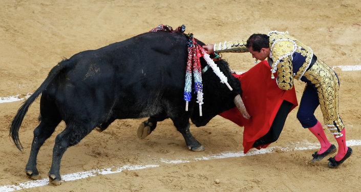 Un jeune torero meurt encorné dans l'arène: une première depuis 30 ans