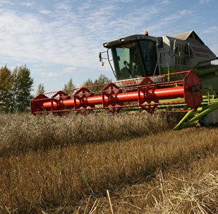 Russie La Russie suspend l'exportation de blé