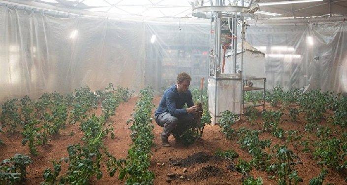 Faire pousser des patates sur Mars ne sera bientôt plus une fiction