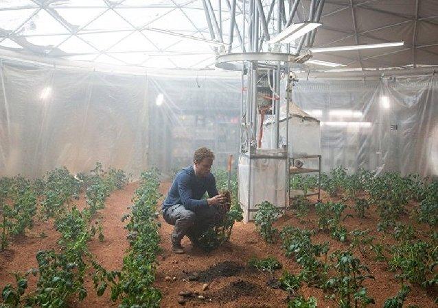 film Seul sur Mars
