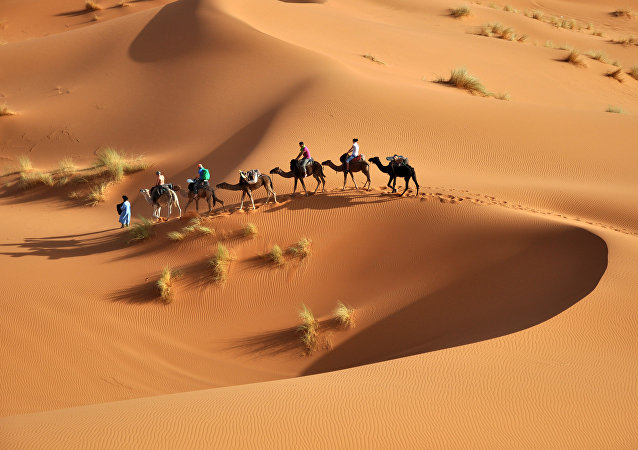 Dans un désert