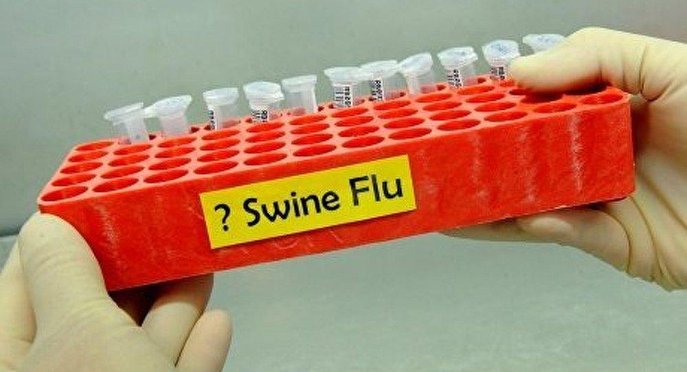 La pandémie de la grippe porcine est terminée