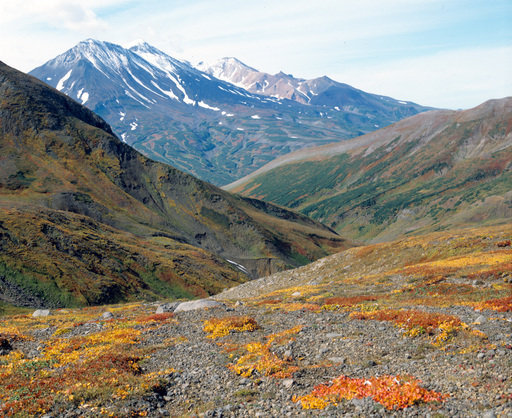 Les volcans sont la principale curiosité du Kamtchatka, dont la faune et la flore sont très variées. Cette région compte trois réserves nationales, cinq parcs naturels, huit réserves d'importance fédérale, 23 réserves d'importance locale et 105 monuments de la nature. Les volcans du Kamtchatka sont inscrits sur la liste du patrimoine mondial de l'UNESCO.
