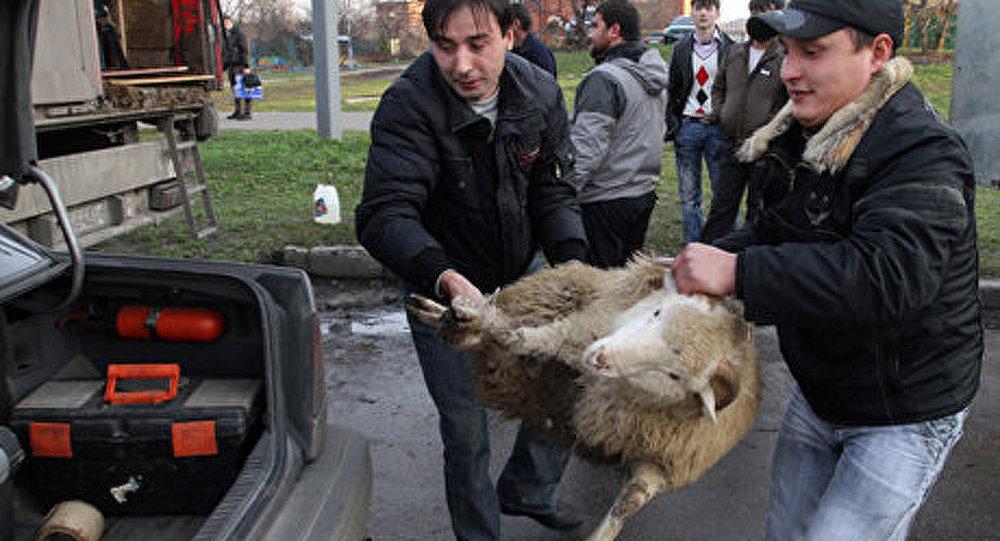 Sobianine: revenons à nos moutons