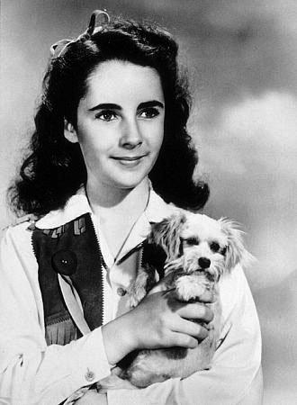 Elisabeth Taylor est née le 27 février 1932 à Hampstead (dans la banlieue de Londres) de parents américains originaires de Kansas City.