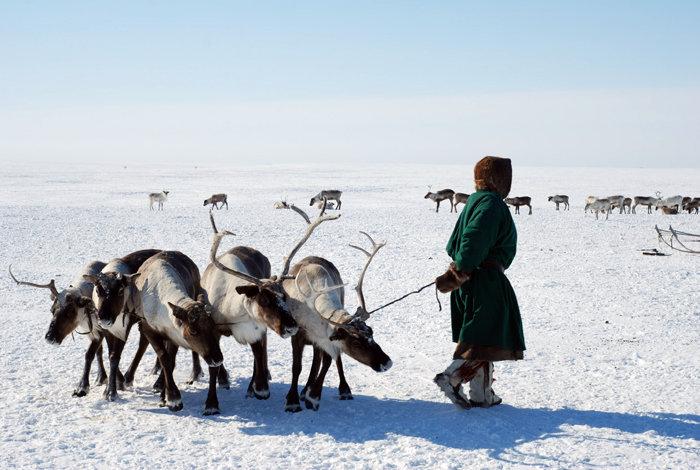 Plusieurs itinéraires seront proposés aux touristes, dont une excursion au-delà du Cercle polaire où habitent des populations autochtones.