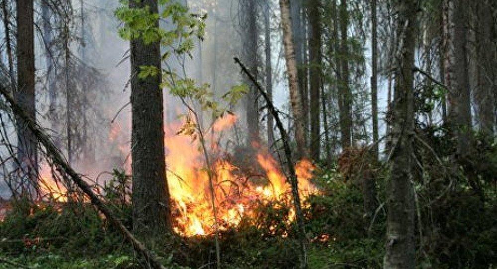 Le Nord de la Russie en feu
